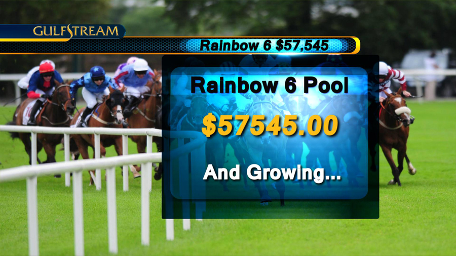 Broadcast Design for Horse Racing - Gulfstream Park